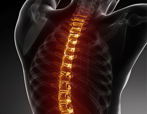 Back pain visual